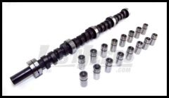 Omix-ADA Camshaft Kit For 19671-86 Jeep CJ Series & Full Size With AMC 290-401 V8 engine 17420.03