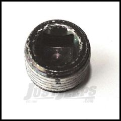 Omix-ADA Dana 44 Differential Cover Plug 99-03 WJ FRONT DANA 30, 03-06 TJ FRONT DANA 44 16595.96
